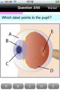 Which label points to the pupil?